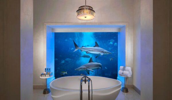 1underwatersuitebathroom1-865660